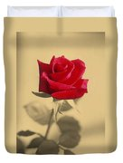 Red Rose Flower Isolated On Sepia Background Duvet Cover