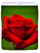 Red Rose Green Background Duvet Cover