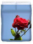 Red Roses With Blue Sky Background Duvet Cover