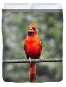 Red Royalty Duvet Cover