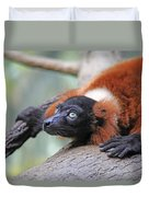Red-ruffed Lemur Duvet Cover