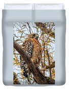 Red-shouldered Hawk In A Willow Tree Duvet Cover