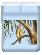 Red-shouldered Hawk On The Palm Tree Duvet Cover