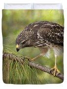 Red Shouldered Hawk Photo Duvet Cover