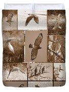 Red-shouldered Hawk Poster - Sepia Duvet Cover
