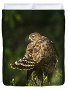 Red-shouldered Hawk Wild Texas Duvet Cover