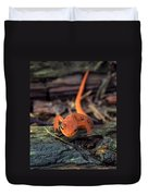 Red Spotted Newt Duvet Cover
