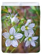 Red-spotted Saxifrage Along Horseshoe Lake Trail In Denali Np-ak  Duvet Cover