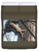 Red Squirrel Licking Dew Droplets  Duvet Cover