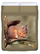 Red Squirrel Perched Portrait Duvet Cover