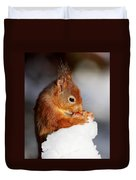 Red Squirrel With Nut In Snow Duvet Cover