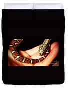 Red Tail Baby Boa - Snake - Pet Duvet Cover