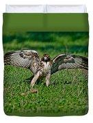 Red-tailed Hawk & Gopher Snake Duvet Cover