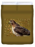 Red Tailed Hawk Close Up Duvet Cover