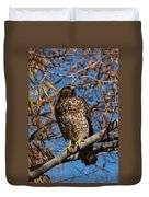 Red-tailed Hawk In A Willow Tree Duvet Cover