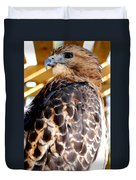 Red Tailed Hawk  Duvet Cover