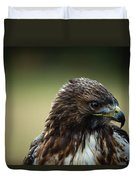 Red-tailed Hawk Portrait Duvet Cover