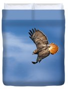 Red-tailed Hawk Soaring Square Duvet Cover