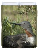 Red-throated Loon With Day Old Chicks Duvet Cover by Michael Quinton