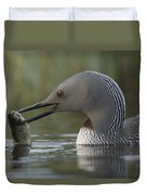 Red-throated Loon With Fish Alaska Duvet Cover