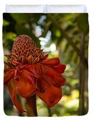 Red Torch Ginger Lily In Hawaii Duvet Cover