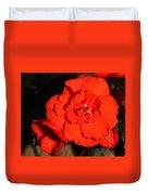 Red Tuberous Begonia Flower Duvet Cover