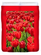 Red Tuilip Bed Duvet Cover