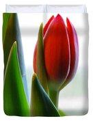 Red Tulip Day 1 Duvet Cover