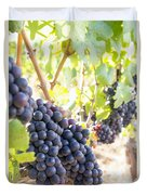 Red Wine Grapes Hanging On Grapevines Vertical Duvet Cover