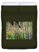 Red-winged Black Bird In The Cattails Duvet Cover