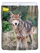 Red Wolf Alert Duvet Cover