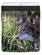 Red Wolf On The Hunt Duvet Cover