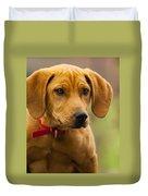 Redbone Coonhound - Man's Best Friend The Hound Dog Duvet Cover