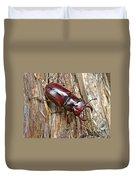 Reddish-brown Stag Beetle - Lucanus Capreolus Duvet Cover