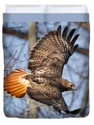 Redtail Hawk Square Duvet Cover by Bill Wakeley