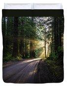 Redwood National Park Morning Duvet Cover