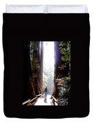 Redwood Path Duvet Cover