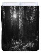 Redwood Sunburst Monochrome Duvet Cover