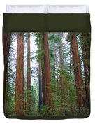 Redwood Trees Duvet Cover