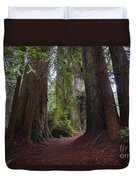 Redwood Duvet Cover