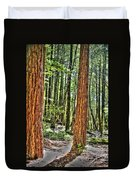 Redwoods 2 Big Basin Duvet Cover