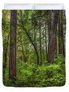 Redwoods 2 Duvet Cover