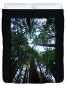 Redwoods II Duvet Cover