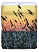 Reeds At Sunset Island Beach State Park Nj Duvet Cover