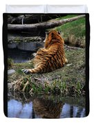 Reflecting Stripes Duvet Cover