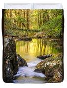 Reflective Pools Duvet Cover