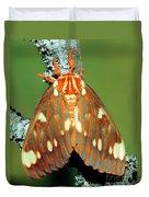 Regal Moth Duvet Cover