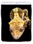 Reptile Close Up On Black Duvet Cover