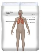 Respiratory System In Female Anatomy Duvet Cover