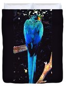 Resplendant Quetzal Of Costa Rica Duvet Cover
